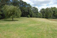 Garden with woodland