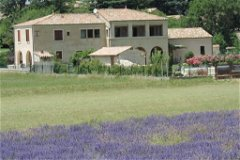 House between lavender fields