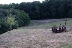 wood/field