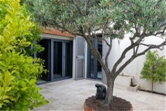 Courtyard with Olive tree andCitrus Trees