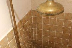 The brass 'flower' shower head