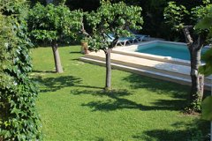 The pool & garden with fig, apricot & cherry trees. Photo taken from a first floor bedroom window.
