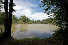 Spec Lake 2