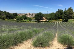 Plot of Land in the stunning Haute-Provence