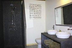 Figuier shower room