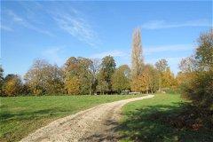 lower field driveway