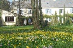 rear garden looking towards summer room
