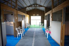 Stablings for horses used as games and fitness room