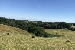 Land with views to Pyrenees