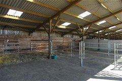 Equestrian barn interior