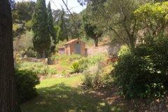 Garden with outbuilding