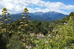 Mount Canigou from the garden