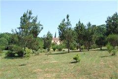 Park garden (part of)